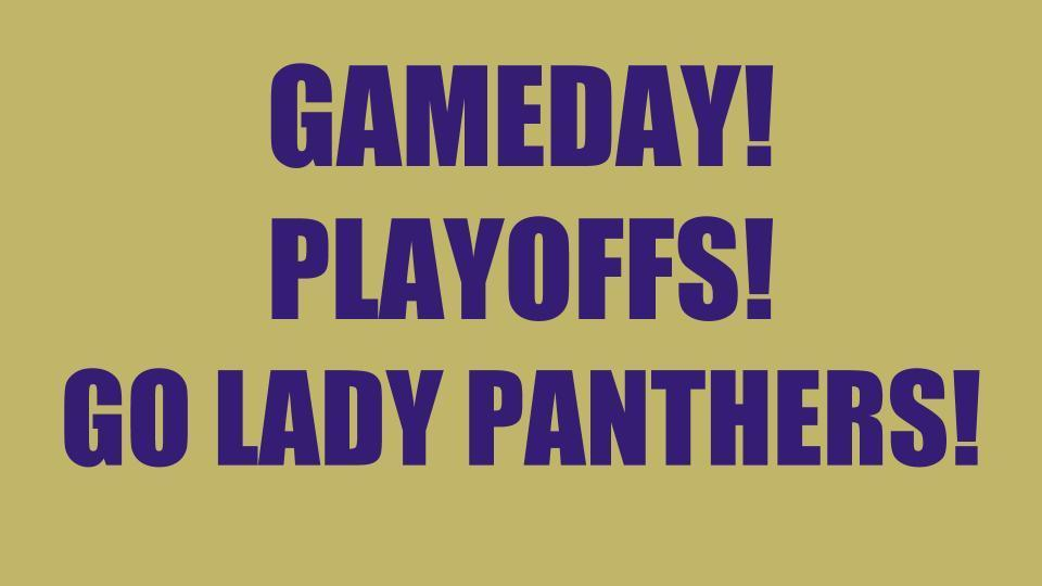 gameday lady panthers